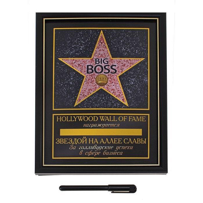 diplom-zvezda-big-boss-+-marker-2