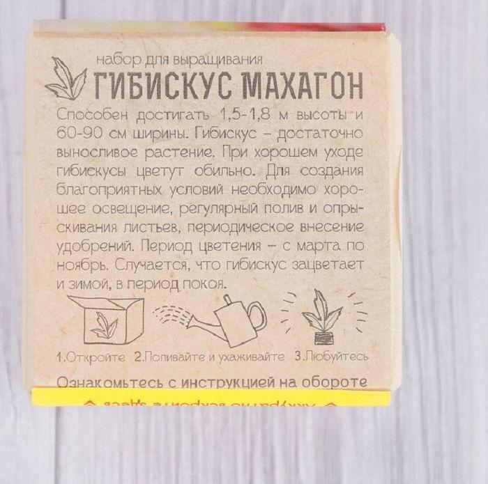 ekokub-gibiskus-1