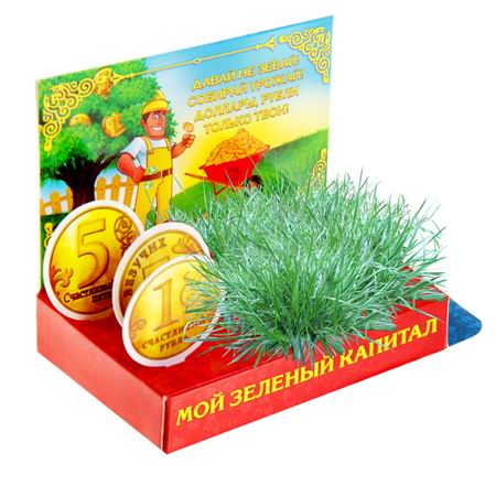 Открытка-растущая трава «Капитал» купить в Минске +375447651009