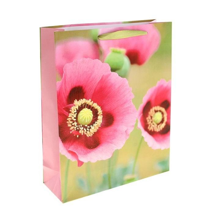 Подарочный пакет «Цветы ветра» Минск