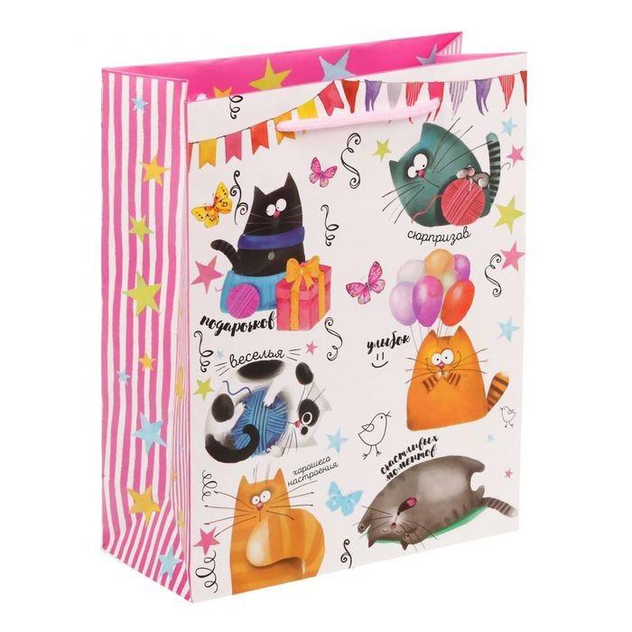 Пакет «Веселые коты» средний Минск +375447651009