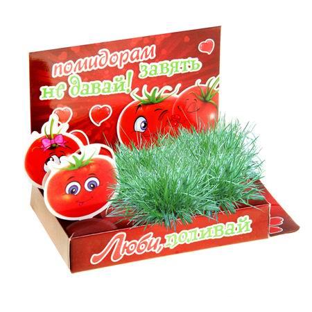 Открытка-растущая трава «Люби, поливай» Минск