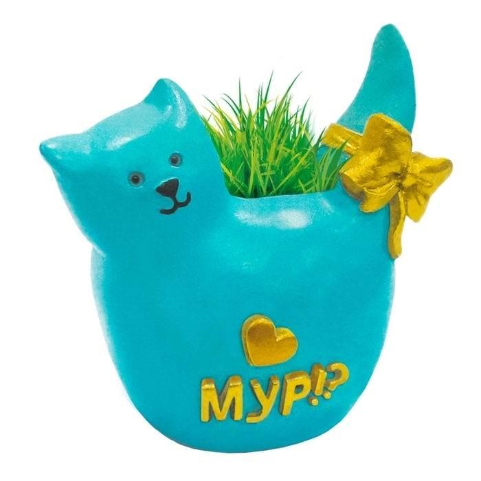 Растущая трава с вазоном «Котик» купить Минск