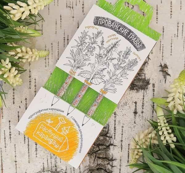 Растущие карандаши 'Прованские травы' черные 3 штуки купить