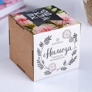 ЭкоКуб для выращивания «Мимоза» купить в Минске +375447651009