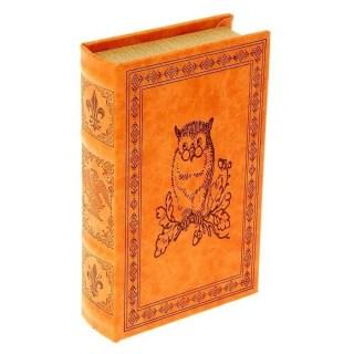 книга сейф ученая сова купить