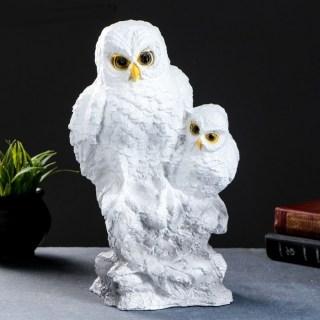 Копилка для монет «Полярные совы» купить Минск +375447651009