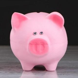 Копилка-свинка для монет «Хочу разбогатеть» купить в Минске +375447651009