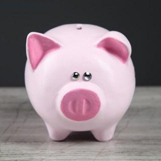 Копилка-свинка для монет «На красивую жизнь» купить в Минске +375447651009
