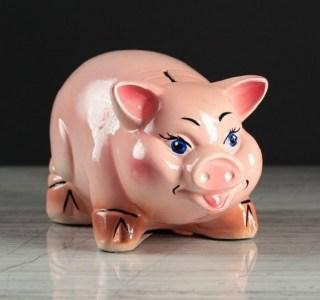 Копилка «Веселая свинка» микс купить в Минске +375447651009