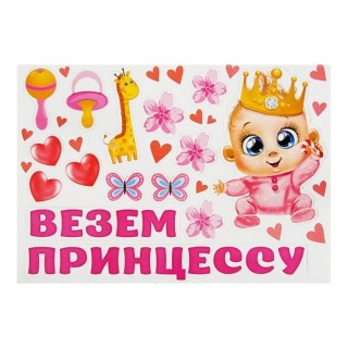 Набор магнитов на авто «Везем принцессу» 15 элементов купить в Минске +375447651009
