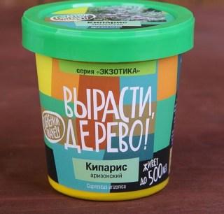 Набор «Вырасти дерево!» кипарис аризонский купить в Минске +375447651009
