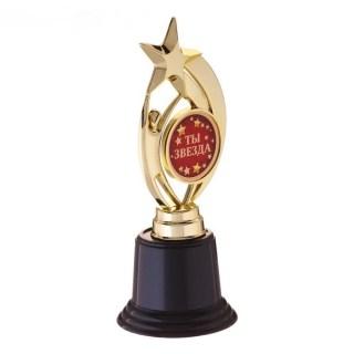 Награда - звезда «Ты звезда» Минск +375447651009
