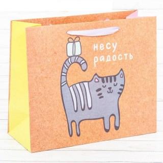 Пакет крафт «Несу радость» купить в Минске +375447651009