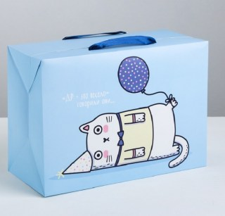Подарочная коробка-пакет «Веселый кот» 28 × 20 × 13 см купить в Минске +375447651009
