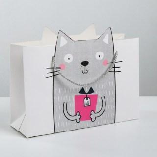Подарочный пакет «Котик с подарком» 30 × 23 × 10 см купить Минск +375447651009