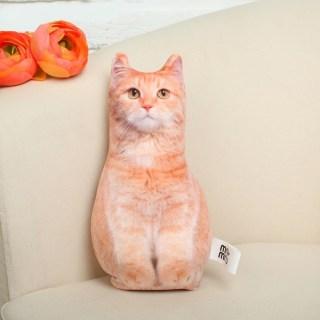 Подушка - антистресс «Рыжий котик» купить в Минске +375447651009