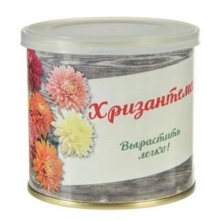 Растение в консервной банке «Хризантема» купить в Минске +375447651009