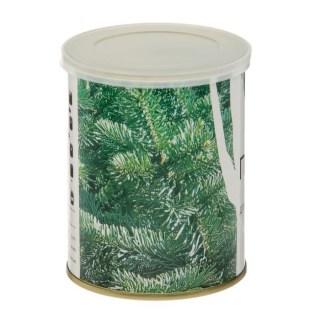 Растение в консервной банке «Пихта» купить в Минске +375447651009