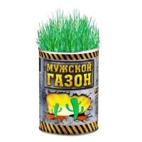 Растущая трава «Мужской газон» в банке купить Минск +375447651009