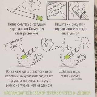 Растущие карандаши 'Салатный микс' черные 3 штуки Минск