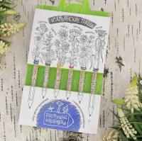 Растущие карандаши Итальянские травы купить