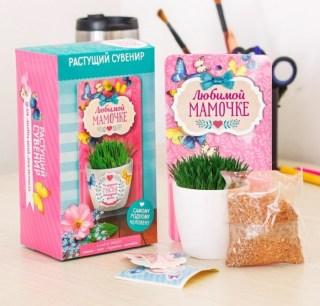 Сувенир с растущей травой «Любимой мамочке» купить в Минске +375447651009