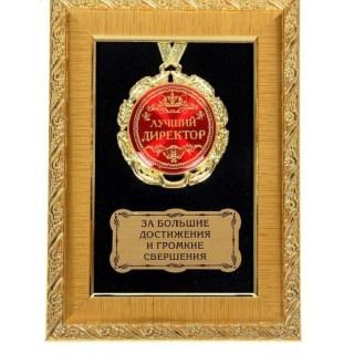 Сувенирное панно с медалью «Лучший директор» купить в Минске +375447651009