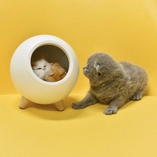 Светильник- ночник «Котик в домике» купить Минск +375447651009