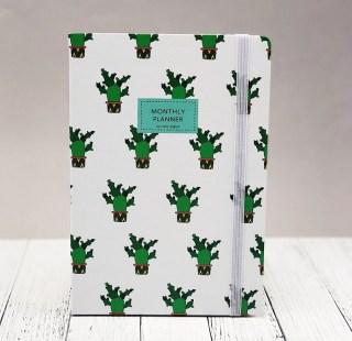 Записная книжка «Cactus» А5 купить в Минске +375447651009