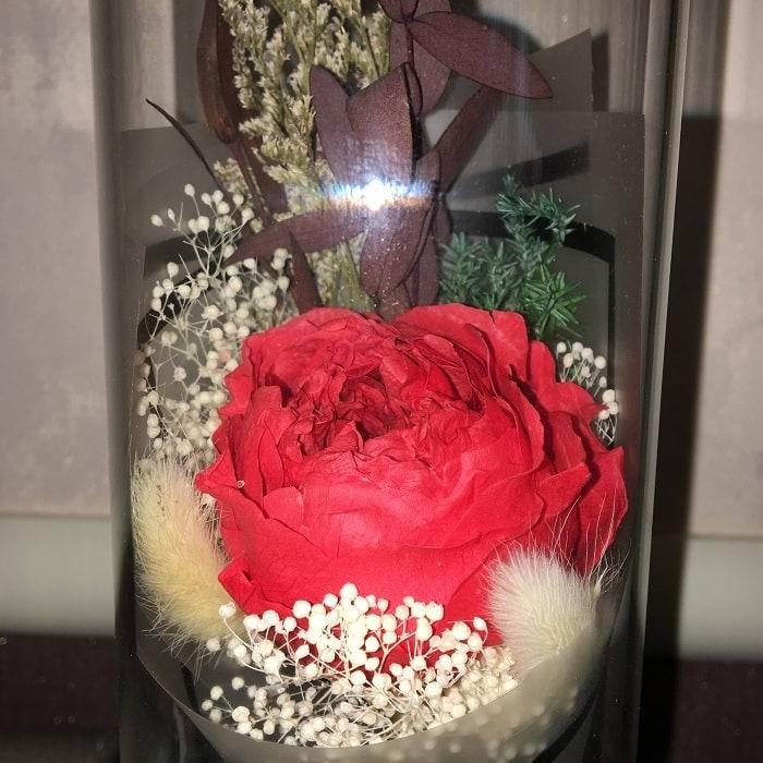 Красная роза в стеклянной колбе с подсветкой купить