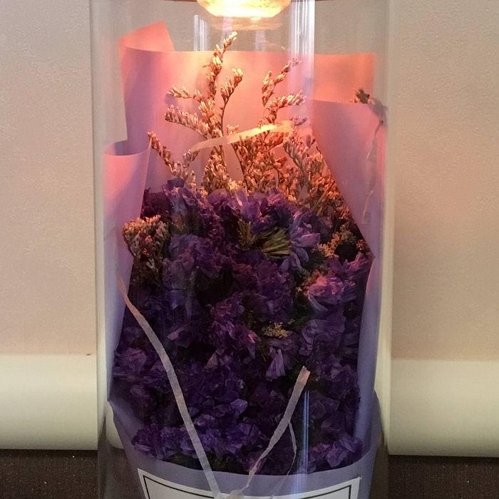 Живой цветок в колбе «Кермек» купить Минск